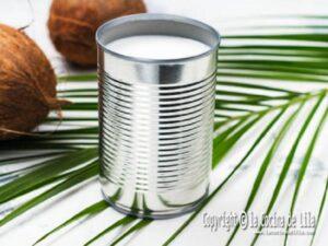 Recetas con leche de coco
